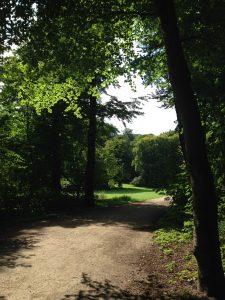 Umgebung Stadtwald Massageraum Julian Ebenfeld
