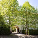 Massage Stadtwaldviertel neu Julian Ebenfeld